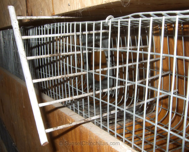 Cage divider